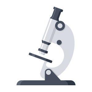 白癬の顕微鏡検査